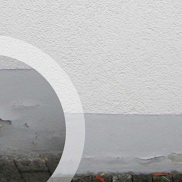 Tipps für feuchte Fassaden