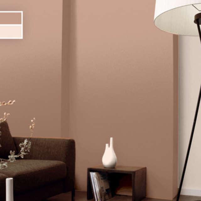 Оттенки коричневого: естественные гармонии - Краски Alpina