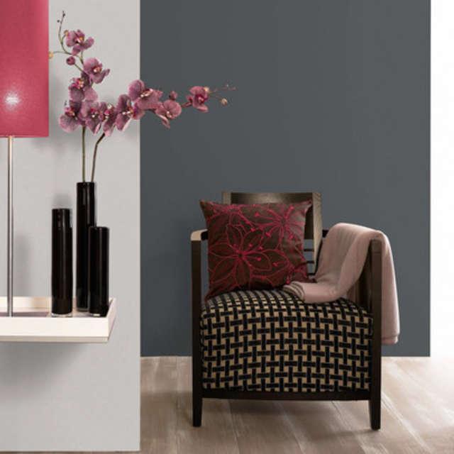 Вдохновение месяца - оттенки серого - Краски Alpina